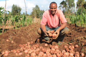 Village potato advisor sees a brighter future in potato farming