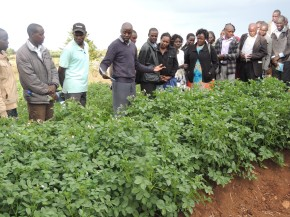 Engaging county governments for better project impact andsustainability