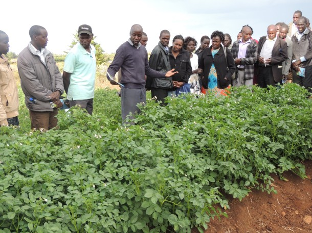 Farmer training in Uasin Gishu County, June 2017